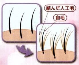 3D増毛の施術イメージ