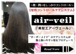 髪質コントロールケアシステム「エアーヴェール」